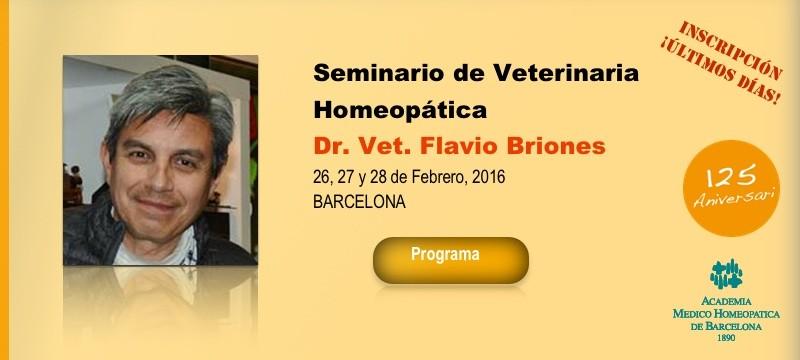 slide_Flavio_Briones