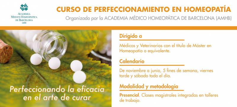 curs-perfeccionament-slide-02